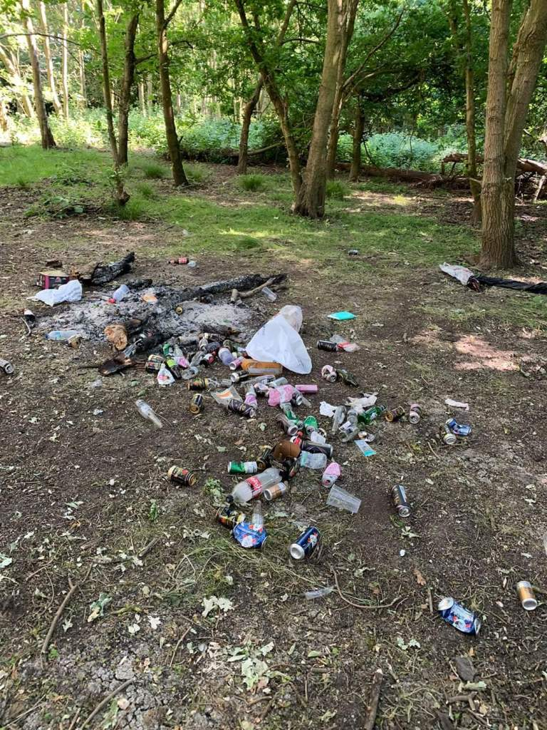 litter-at-narborough-bog-c-leicestershire-and-rutland-wildlife-trust-b-2